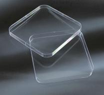 Đĩa Petri nhựa vuông Aptaca-Ý